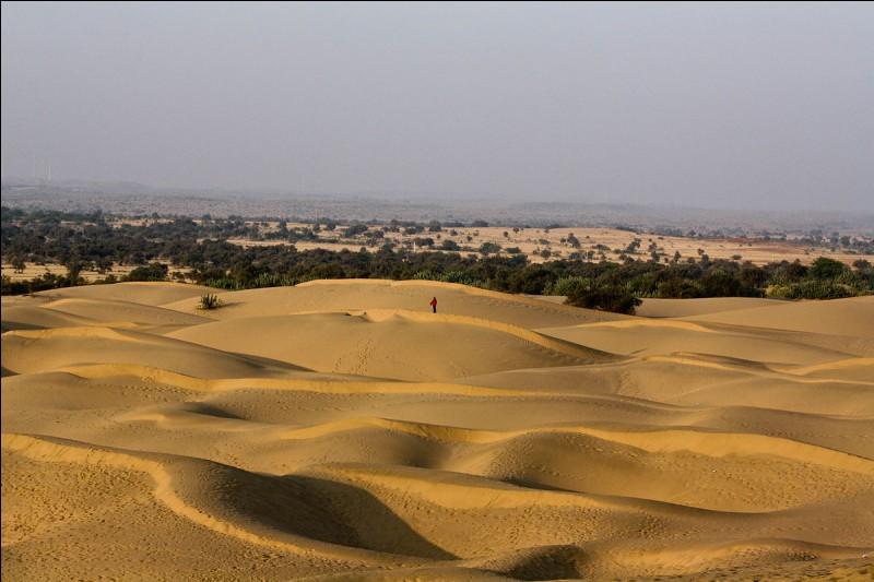 Le désert du Thar se trouve en Arabie.