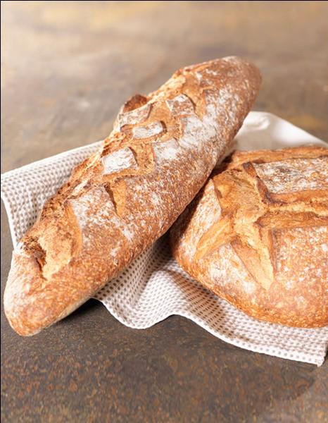 Tu marches tranquillement avec Gale. Quelques minutes plus tard, il sort du pain, du vrai pain, il est encore chaud, tu adores ça. Il te demande si tu en veux. Que fais-tu ?
