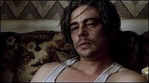 """Qui joue aux côtés de Benicio del Toro dans le film """"21 grammes"""" ?"""