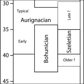 À quelle époque a-t-on attesté les premières traces de peuplement de l'Ain ?