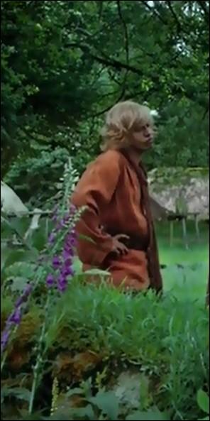 Par qui est joué ce personnage qui tourne autour de Mevanwi dans le Livre 6 ?
