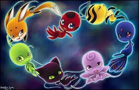 Comment s'appellent ces petites créatures magiques qui accordent des pouvoirs à leur porteur ?