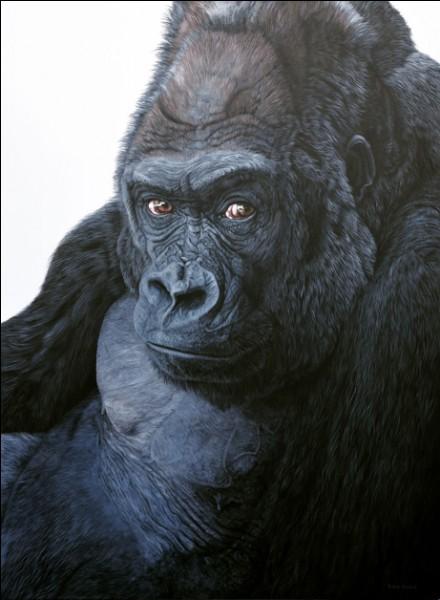 """C'est l'actrice Holly Hunter qui interprète le rôle principal du film """"Gorilles dans la brume""""..."""