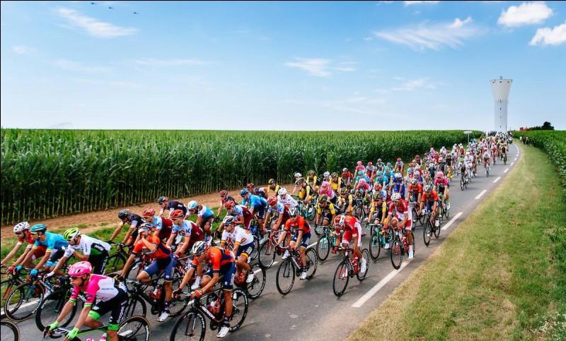 Lequel de ces coureurs a dominé les sprints sur cette Vuelta avec trois succès dans des sprints massifs ?