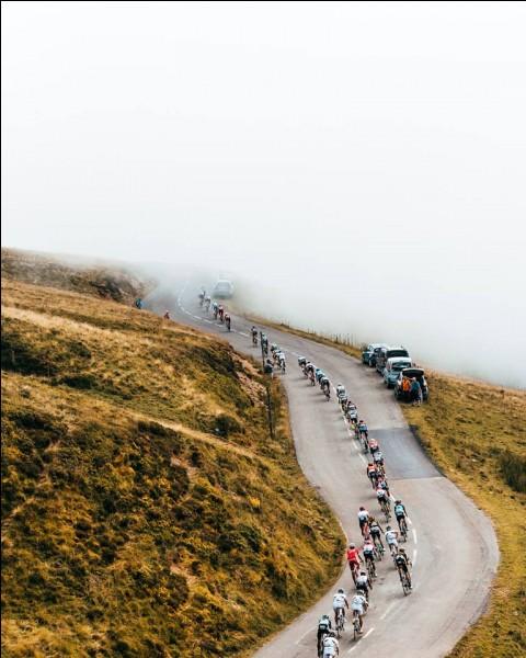 Terminons ce Giro avec une dernière question. Quel coureur a porté le plus de jours le maillot rose de leader du classement général ?