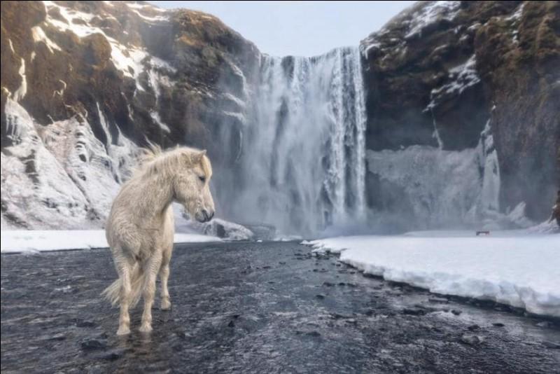 """Pour prendre ce cliché, le photographe a affronté des températures glaciales : «Une météo capricieuse, une mauvaise lumière et un froid terrible.»Pourtant cette photo a quelque chose de magique, on la verrait dans """"The Legend of Zelda"""" ou """"Lord of the Rings."""" Dans quel pays fut pris ce magnifique cliché ?Photo de E. Arencibia, National Geographic Travel Photographer of the Year Contest."""