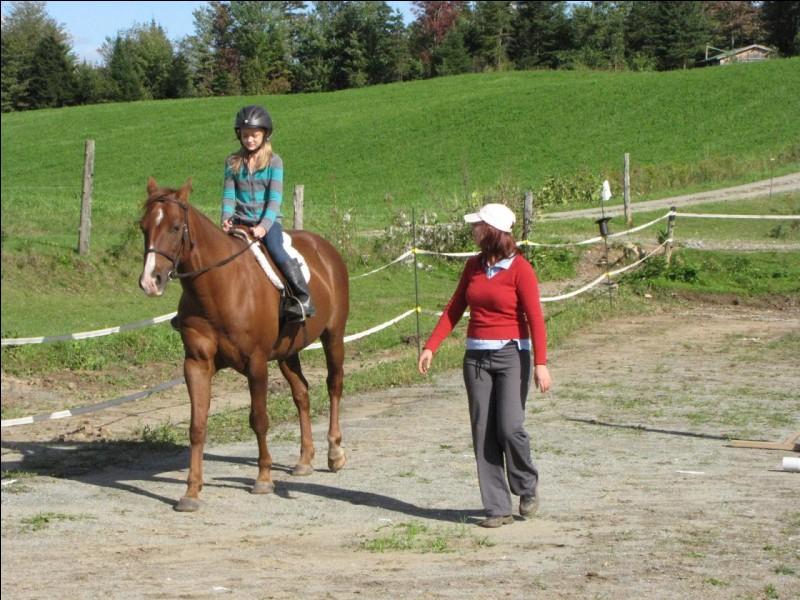 La personne qui donne des cours d'équitation est un (ou une) :