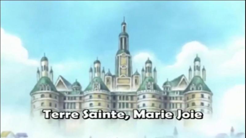 Les pirates esclaves est le nom de l'équipage des anciens esclaves de Marie-Joie.