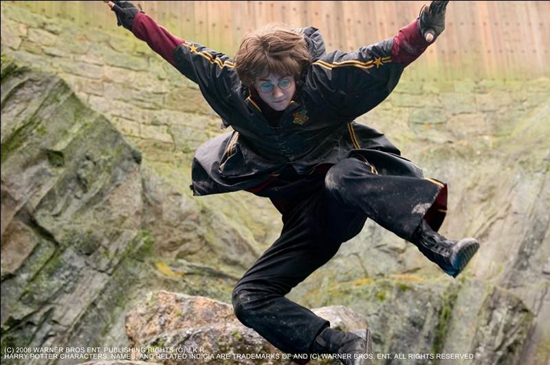 """""""Harry Potter"""" est une saga de 7 films..."""