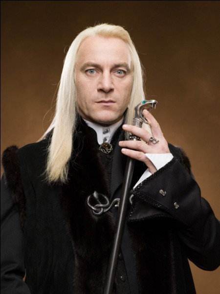 """Dans """"Harry Potter et les reliques de la mort partie 1"""" qui casse la baguette de Lucius Malefoy ?"""