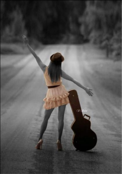 """Qui chantait """"Le long des autoroutes il y a de beaux paysages, j'ai ma guitare dans le dos et pas un rond pour l'voyage"""", dans sa chanson """"Rockcollection ?"""