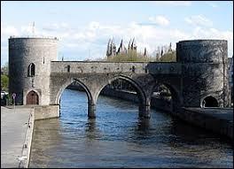Vrai ou faux : l'Escaut est une rivière qui coule en France et en Belgique.