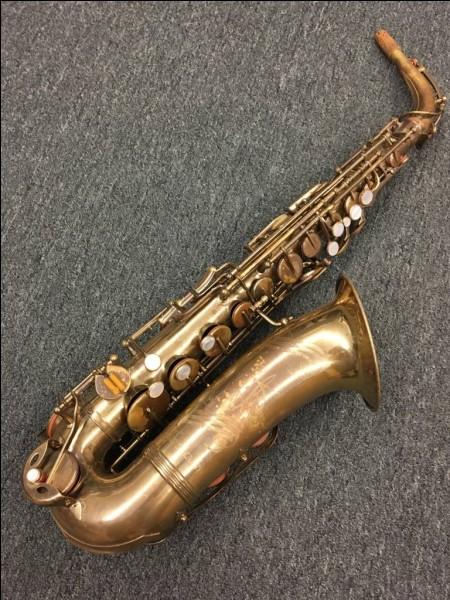 Lui, ou elle, nous interprète : Billie Nettoie son Saxophone !
