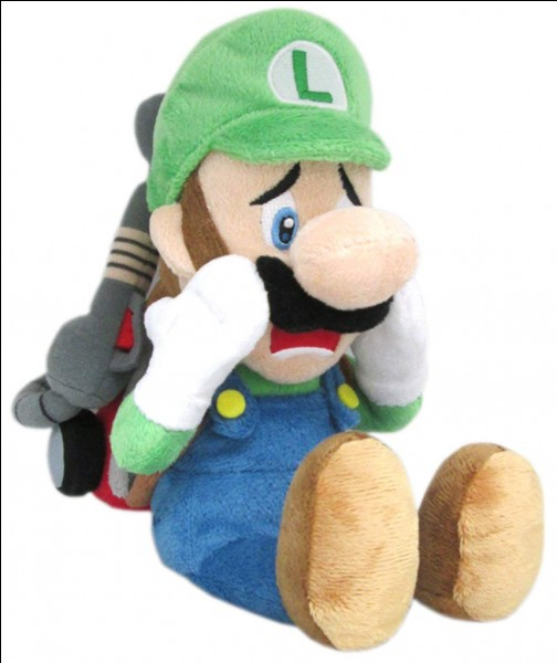 Luigi est :