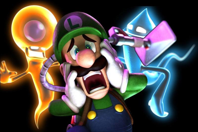 Luigi a un jeu en solo, lequel ?