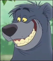 Qui est Baloo ?