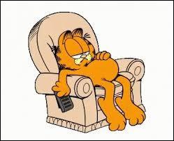 Qui est Garfield ?