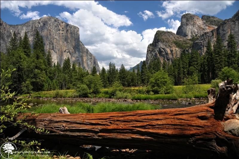 Yosemite est un parc national depuis 1890, le deuxième plus ancien du pays.'' C'est un rêve éveillé pour tous les amoureux de la nature et des paysages de rêve ! '' Faut surtout pas oublier de prendre un cliché des icônes de granit tel le ''Half Dome'' et le ''El Capitan''.Dans quel pays est-on ?