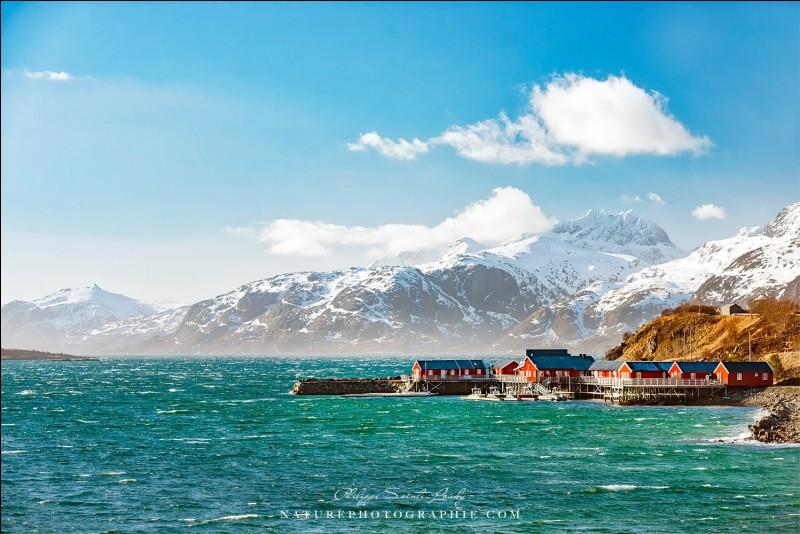 Selon Philippe Sainte-Laud : ''La pêche de la morue constitue encore l'activité principale des îles Lofoten. Chaque hiver, de nombreux pêcheurs viennent de tout le nord de (...) pour pêcher d'énormes quantités de poissons qui seront ensuite salés et séchés à l'air libre''.Vous devez trouver le nom du pays qui a été enlevé dans l'explication de la photo :