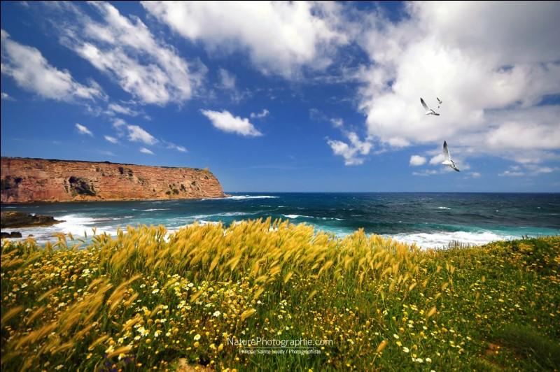 Seconde île de la Méditerranée, paradis des randonneurs. Cette photo s'intitule : ''Les vents de la mer''. Pour profiter de la place, on recommande d'y aller en juin ou septembre, on évite les grandes chaleurs et le trop plein de visiteurs. Où est-on ?
