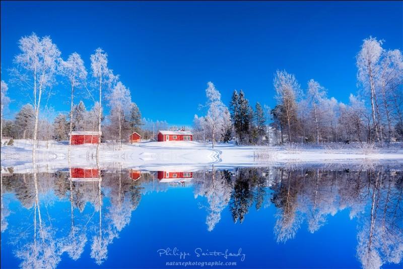 Reflet improbable est le nom de la photo. Voici ce que son auteur dit du pays : '' (...) je te pardonne ton froid et tes immenses forêts balayées par les vents. Les soirs d'hiver en (...), seuls les aboiements des huskies déchirent le silence blanc. ''Quel est ce pays de climat rigoureux pendant l'hiver, fait surtout de taïga qui affiche la densité la plus faible de population de toute l'Europe ?