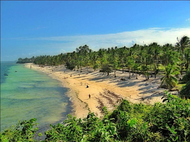 Quelle mer ou quel océan borde les côtes de la Côte d'Ivoire ?