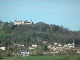 Sur cette image, vous avez en bas le village de Frébécourt et en haut le château de Bourlémont. Tout ceci se situe dans l'ancienne région Lorraine, dans le département ...