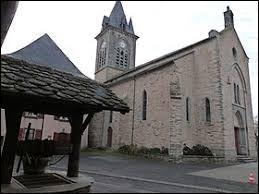 La Salvetat-Peyralès est un village d'Occitanie situé dans le département ...