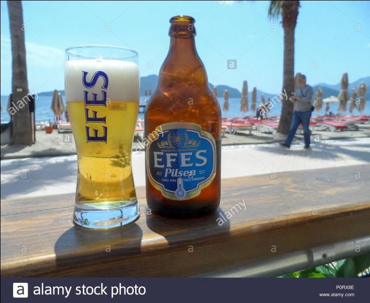 De quel pays la bière Efes Pilsen est-elle originaire ?
