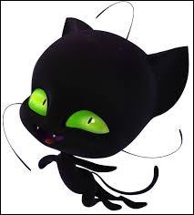 Comment s'appelle le kwoimi de Chat Noir ?