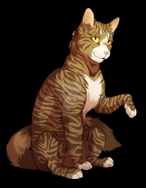 Qui est cette chatte du Clan du Tonnerre ?