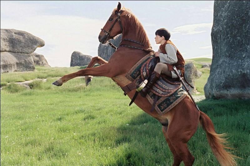 Comment s'appelle le cheval d'Edmund ?