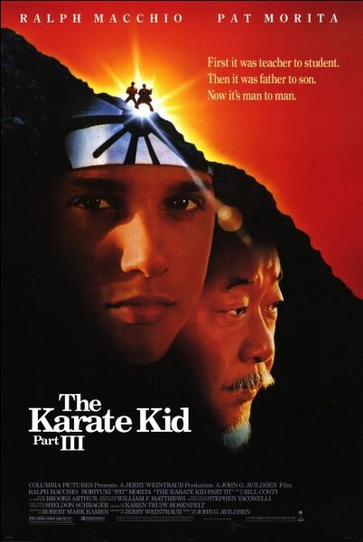 """""""Karaté Kid"""" est un film réalisé par David G. Alvidsen."""
