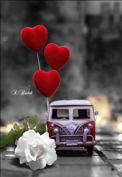 """Elle chantait """"J'irai chercher ton cœur, si tu l'emportes ailleurs..."""""""