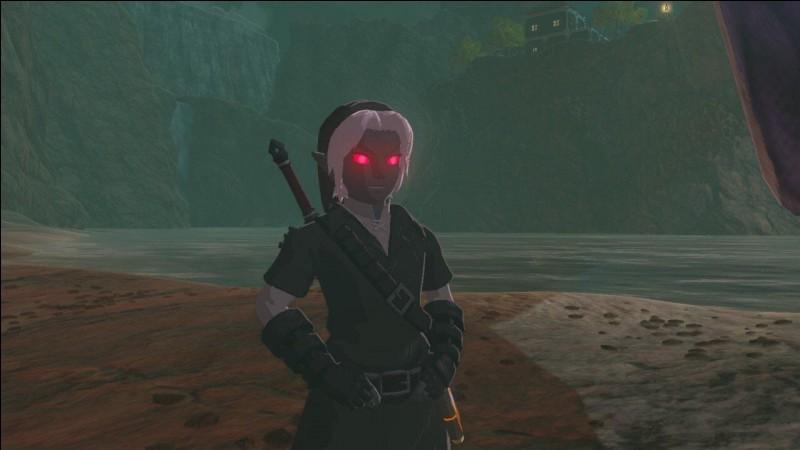 Comment avoir la tenue ''Dark Link'' ?