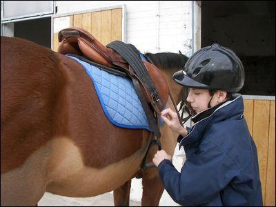 Que faut-il vérifier pour s'assurer que son cheval ou poney est bien sellé ?