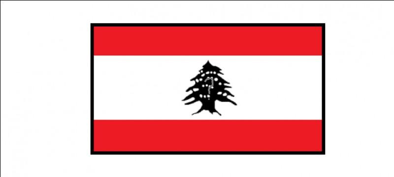 Quel arbre apparaît sur le drapeau du Liban ?