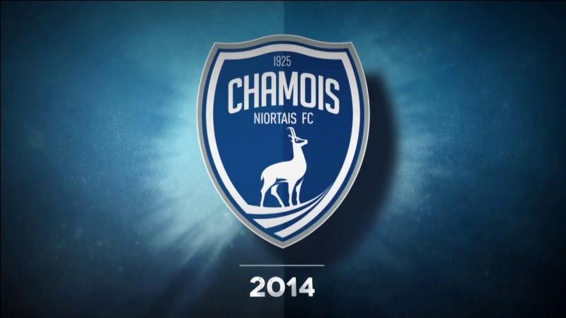 Logos des équipes de foot françaises