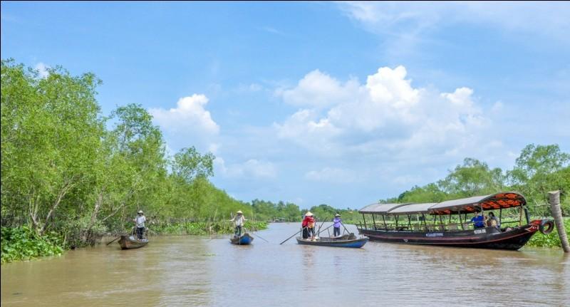 Comment s'appelle le fleuve qui se situe entre le Vietnam, le Laos et le Cambodge ?