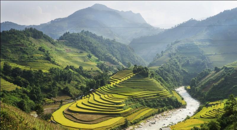 Quels sont les pays voisins du Vietnam ?
