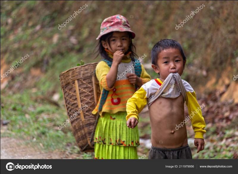 Combien y a-t-il d'habitants au Vietnam ?