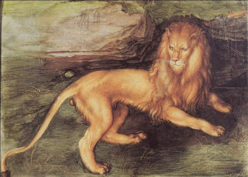 L'artiste allemand Albrecht Dürer est connu pour ses nombreux tableaux, dont plusieurs autoportraits. Parmi eux, se trouve celui d'un lion. Mais quel autre animal ce célèbre artiste a-t-il peint ?