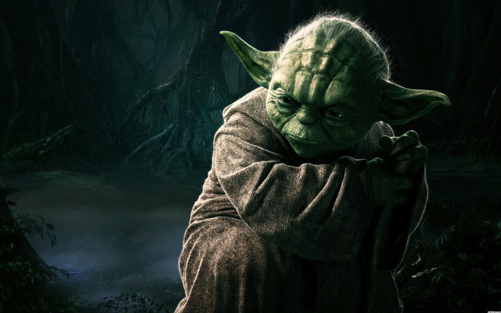 Star Wars : Vrai ou faux ?