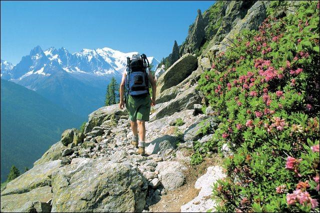 Cette destination est le célèbre centre pour cette randonnée mythique de 215 km, parcourant la France, l'Italie et la Suisse. On peut profiter de paysages légendaires, du Beaufortain à la prestigieuse vallée de Chamonix, en passant par le val Ferret italien et la Suisse, allant des prairies verdoyantes aux pics enneigés.Nommez cette montagne, la plus élevée d'Europe occidentale, soit 4807 m ?