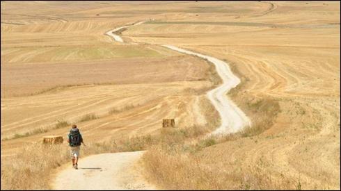 Peut-être le chemin le plus connu, il remonte au XIIe siècle et il est long d'environ 1 500 km. Ses multiples randonnées sauront vous conquérir par leur beauté, leur diversité, et les rencontres que vous y ferez. Le passage des Pyrénées est bien entendu mémorable tant sur le plan spirituel que celui des paysages.Nommez ce légendaire chemin où l'on trouve la route du Puy-en-Velay à Conques ?