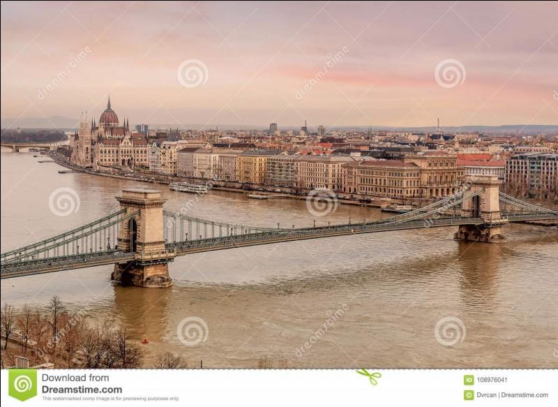 Pour la Hongrie quelle est sa capitale ?
