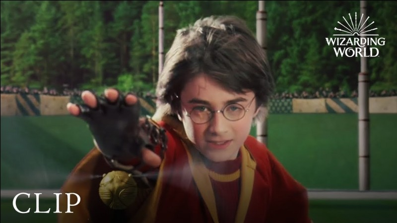Maintenant, aimes-tu le quidditch ?