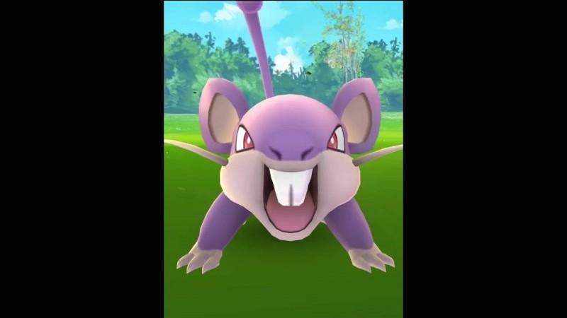 En réalité, tu remarques un petit rat mauve dans un coin, que fais-tu ?