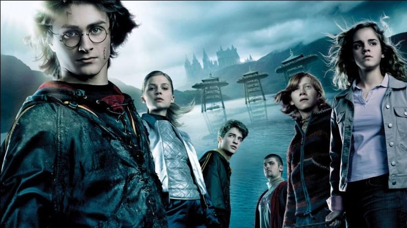 Ensuite, lequel de ces personnages de ''Harry Potter'' est ton préféré ?