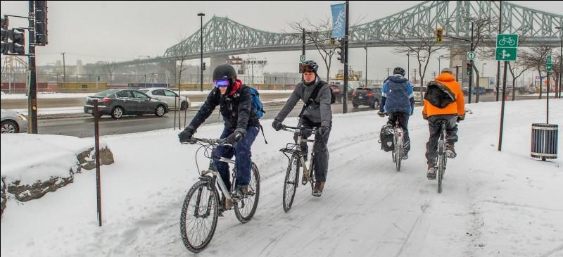 """Le vélo d'hiver y gagne en popularité : le nombre de cyclistes y roulant l'hiver a doublé depuis 2009. Dans la capitale économique du Québec, les cyclistes n'ont pas à choisir entre les rues ou les trottoirs, on leur déneige certaines pistes. Quelle ville dit : ''Les cyclistes vont rouler, même dans les conditions les plus extrêmes, s'ils ont accès à des pistes où ils se sentent en sécurité"""" ?"""